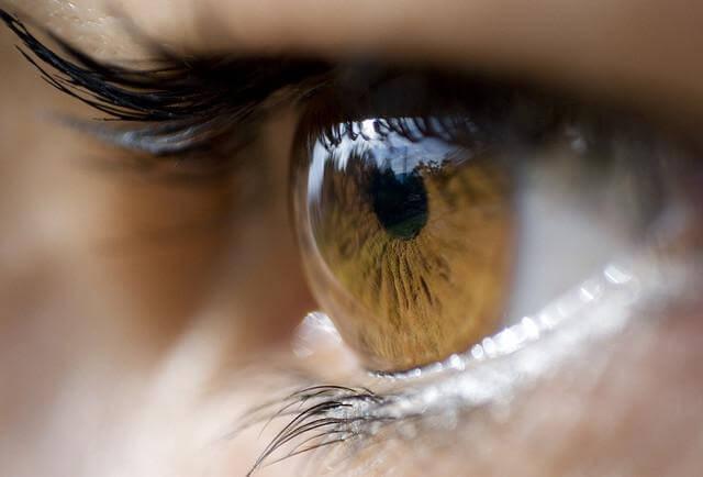 Le langage des yeux nos pens es for Effet miroir psychologie