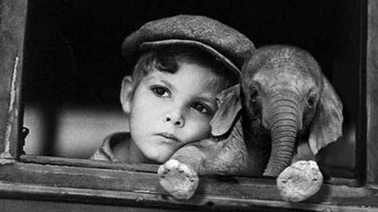 Sommes nous comme l'éléphant enchaîné?