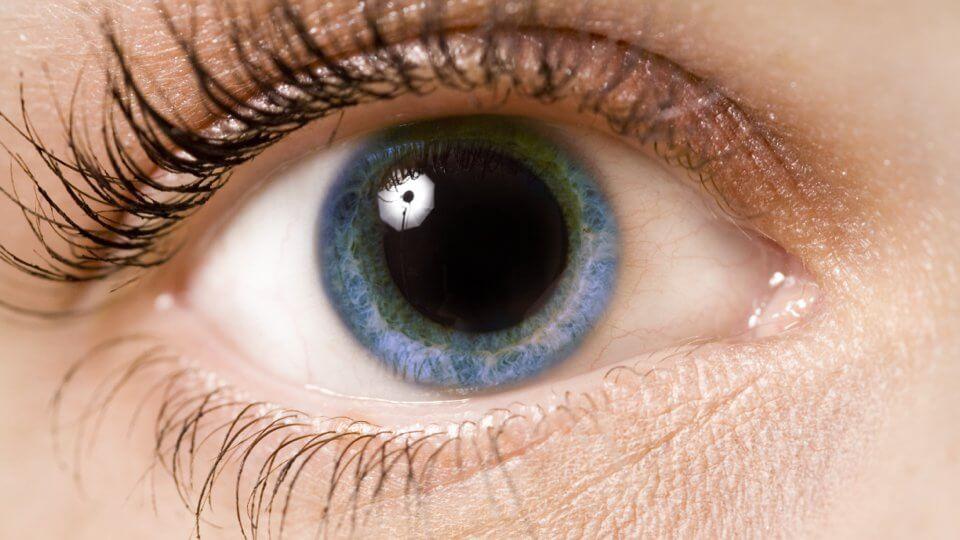 Que révèlent nos pupilles ?