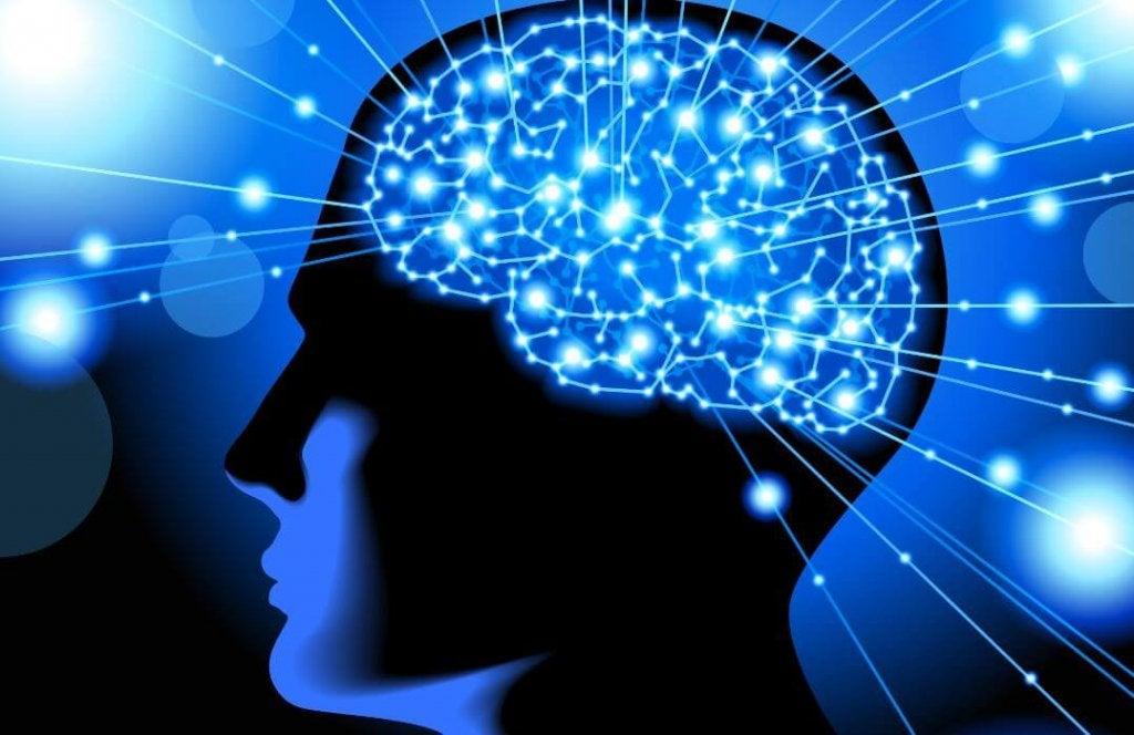 Après avoir lu cet article, vous ne verrez plus votre cerveau de la même manière