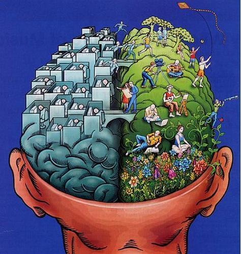 Les hémisphères cérébraux : un mythe s'effondre?