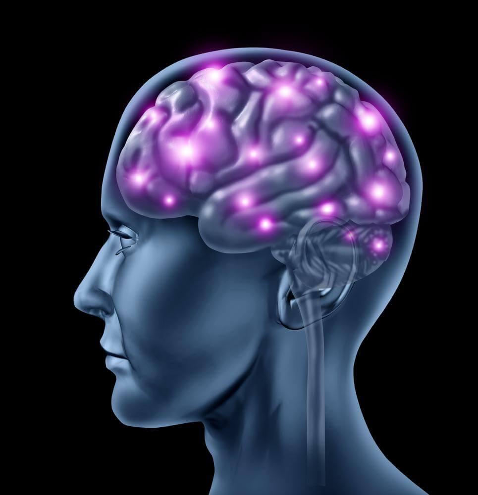 8 informations insolites sur le fonctionnement de votre cerveau
