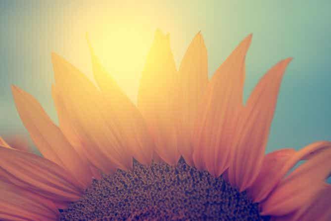 Le soleil arrive toujours après l'orage : l'art de recommencer