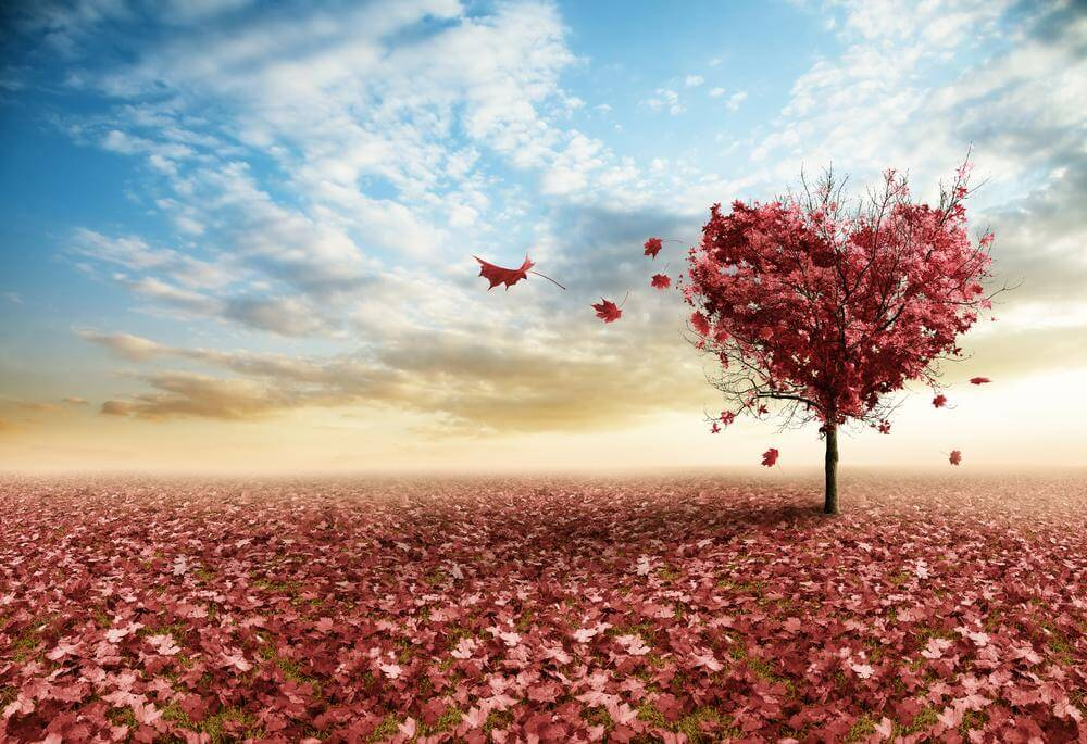 La gentillesse qui mène à l'autodestruction