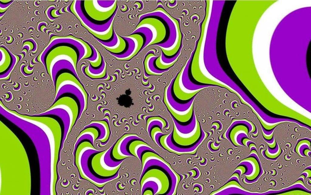 Les iIlusions sont optiques, quand le cerveau s'équivoque