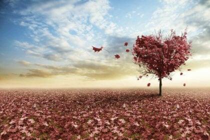 10-misterios-del-amor-explicados-por-la-ciencia-1-420x280