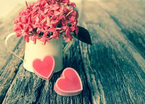 Mettez de l'amour dans votre vie !