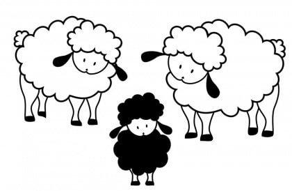 mouton noir22-420x274