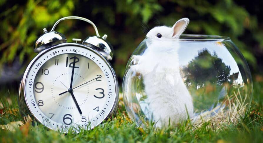 Soyez productif en seulement 5 minutes !