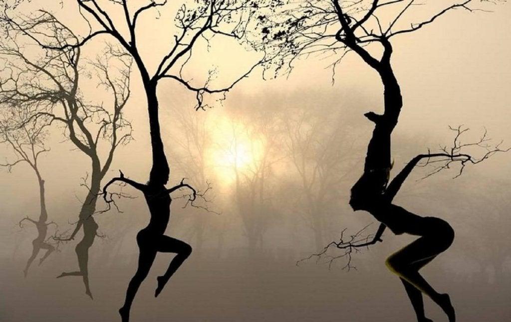 Vivre avec des ailes ou des racines