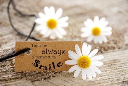 raison de sourire