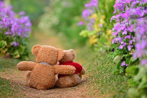 deux-ours-se-faisant-un-calin