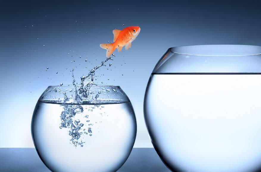 Surmonter des obstacles pour grandir