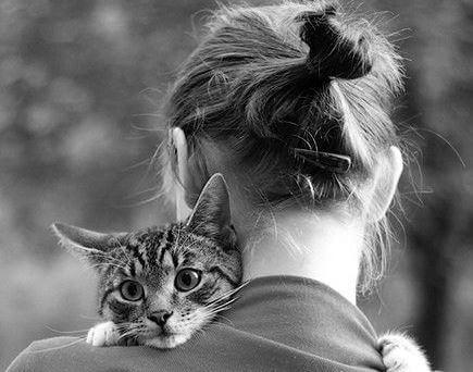 Cómo-decir-adiós-al-amigo-fiel-que-me-enseñó-a-ser-humano-3