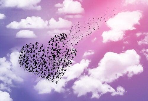 Coeur-d'oiseaux