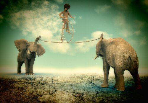Enfant-en-equilibre-entre-deux-elephants