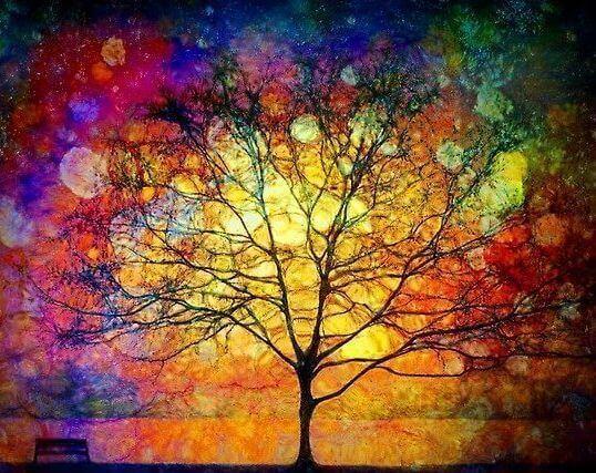 arrbre en couleurs