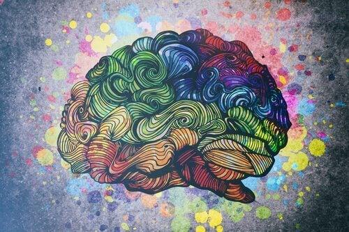 Découvrez les 8 intelligences de l'être humain