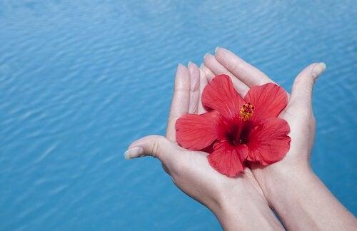 La gratitude, l'ingrédient secret