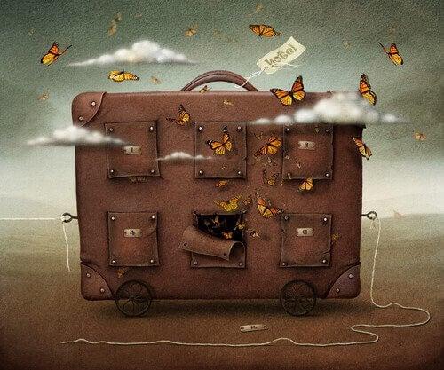 valises avec des papillons