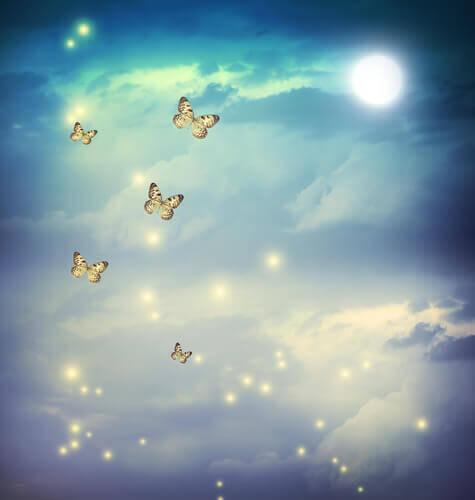 papillons qui volent dans le ciel