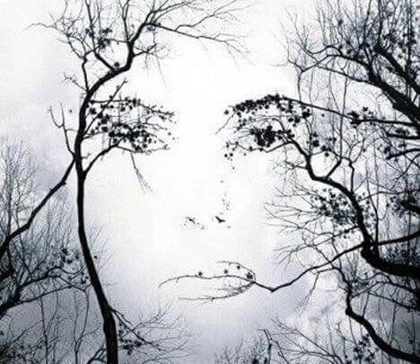 Profil-feminin-arbres