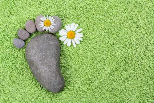 Trébucher est humain, mais ne vous attachez pas à la pierre...