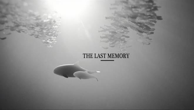 Ce court-métrage sur nos océans vous ouvrira les yeux sur une réalité que nous ne devons plus ignorer