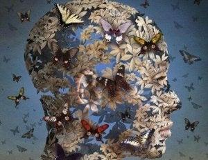 visage en papillons