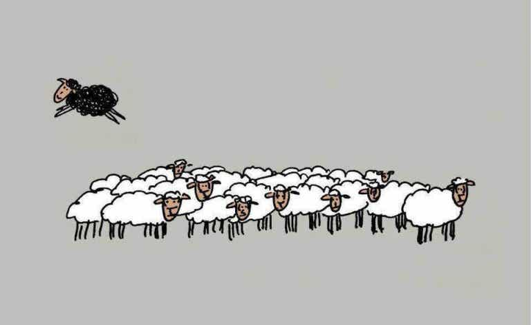 Le mouton noir n'est pas méchant ; il est simplement différent