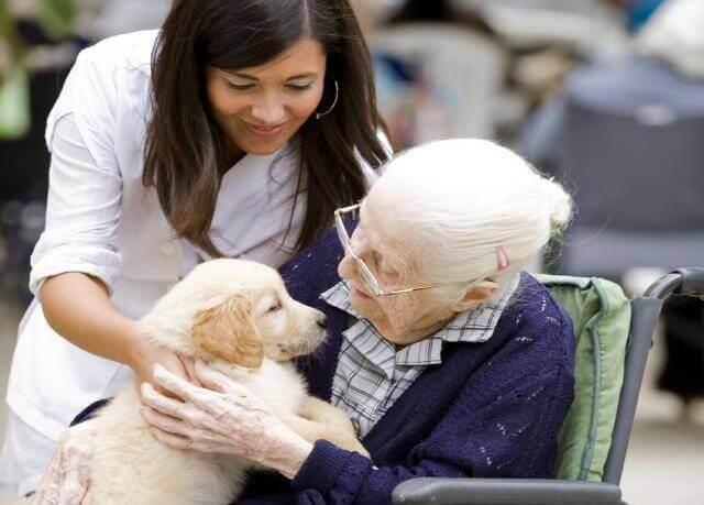 anciana-con-un-perro
