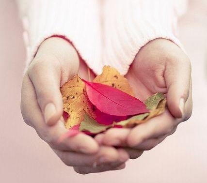 manos-femeninas-con-hojas