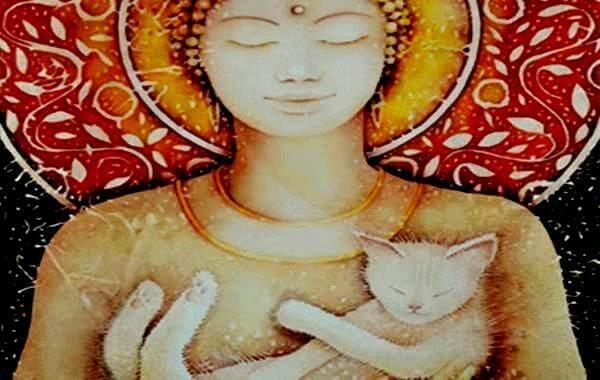 Chat-Bouddha