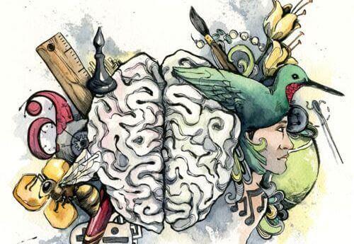 Découvrez quelle est votre intelligence dominante