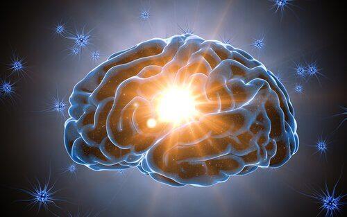 La réserve cognitive protège notre cerveau