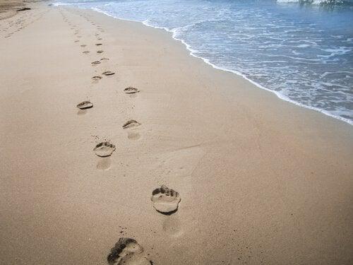 Empreintes-sur-la-plage