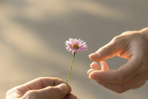 La réciprocité, l'un des ciments de nos relations