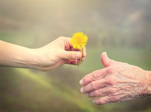 Main-donnant-une-fleur