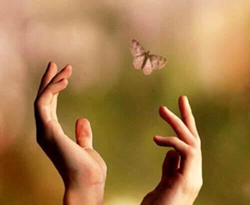 Mains-essayant-d'atteindre-un-papillon