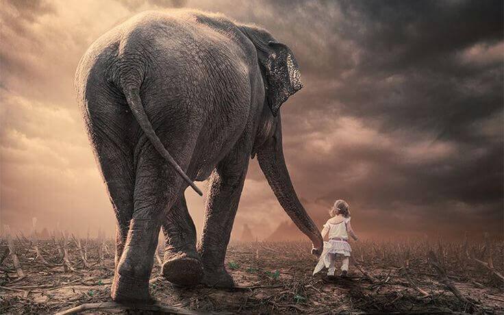 fille-avec-un-elephant
