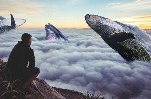 homme-regardant-un-ciel-de-baleine-1024x554