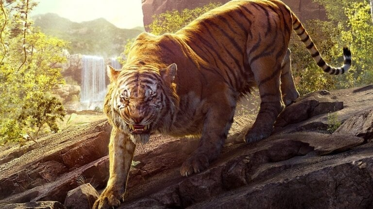 jungle6-768x432