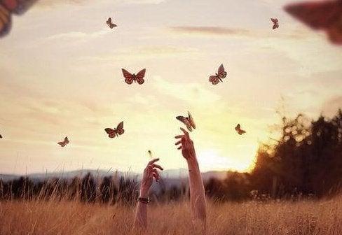 papillons-e1464042178519