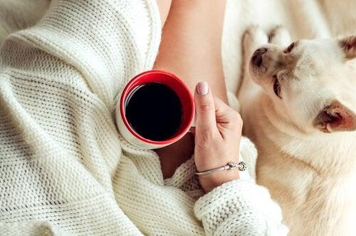 5 stratégies pour vaincre la paresse