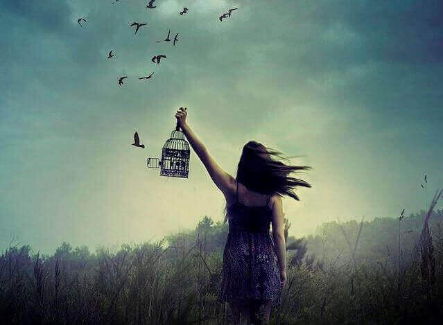 liberer-des-oiseaux