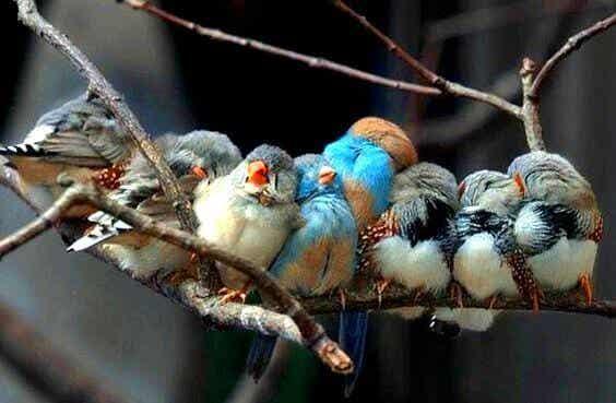 Si la vie vous donne des personnes merveilleuses, c'est parce que vous le méritez