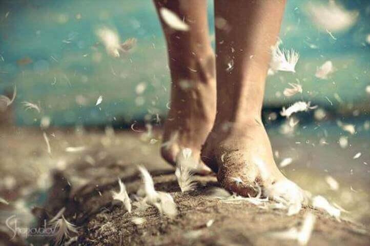 caminar-pies-y-plumas