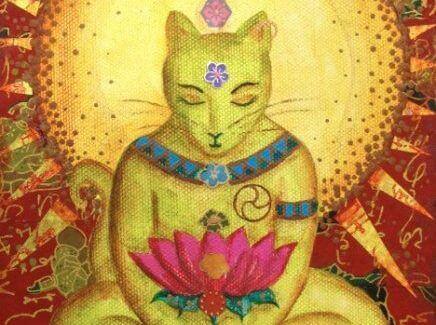 gato-buda-1
