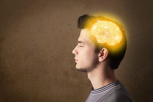 adolescente-con-el-cerebro-iluminado-1