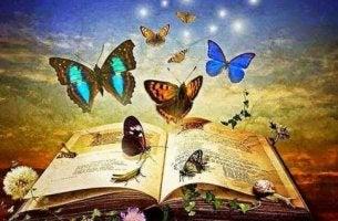 livre-plein-de-papillons